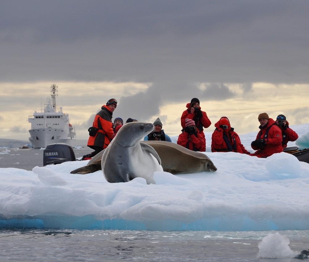 Кем можно работать в Антарктиде?