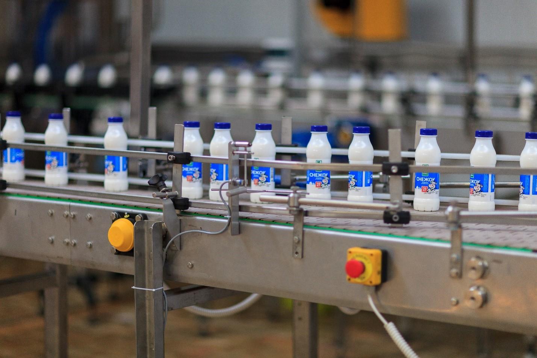 Как устроена работа на молочном комбинате