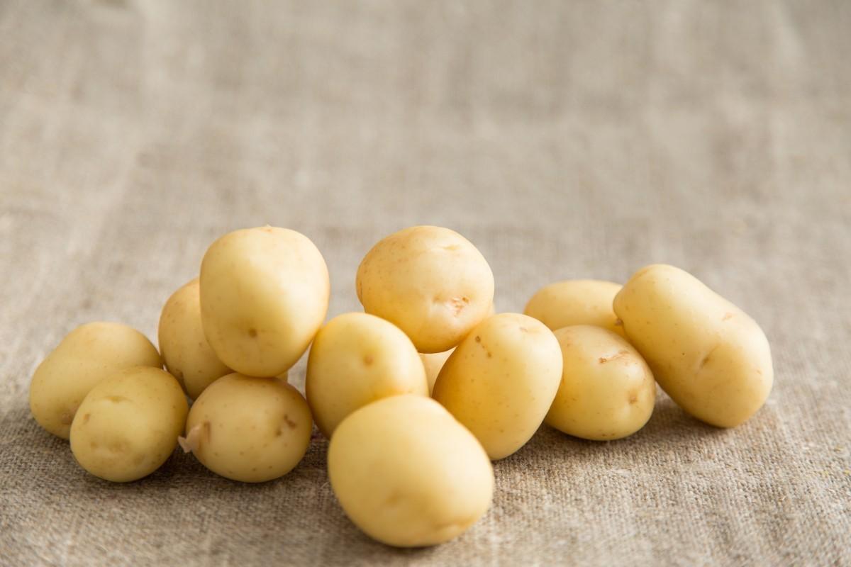 На прилавках может появиться картошка «эконом-класса»: выиграют ли от этого покупатели